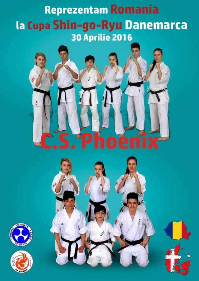 karate danemarca