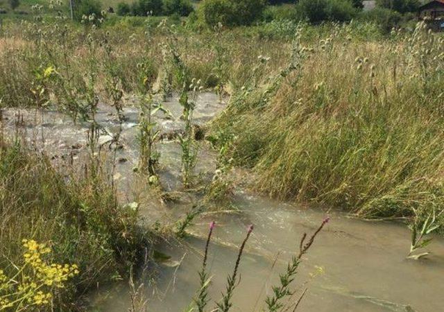 Apa destinata Bacaului s-a risipit pe camp