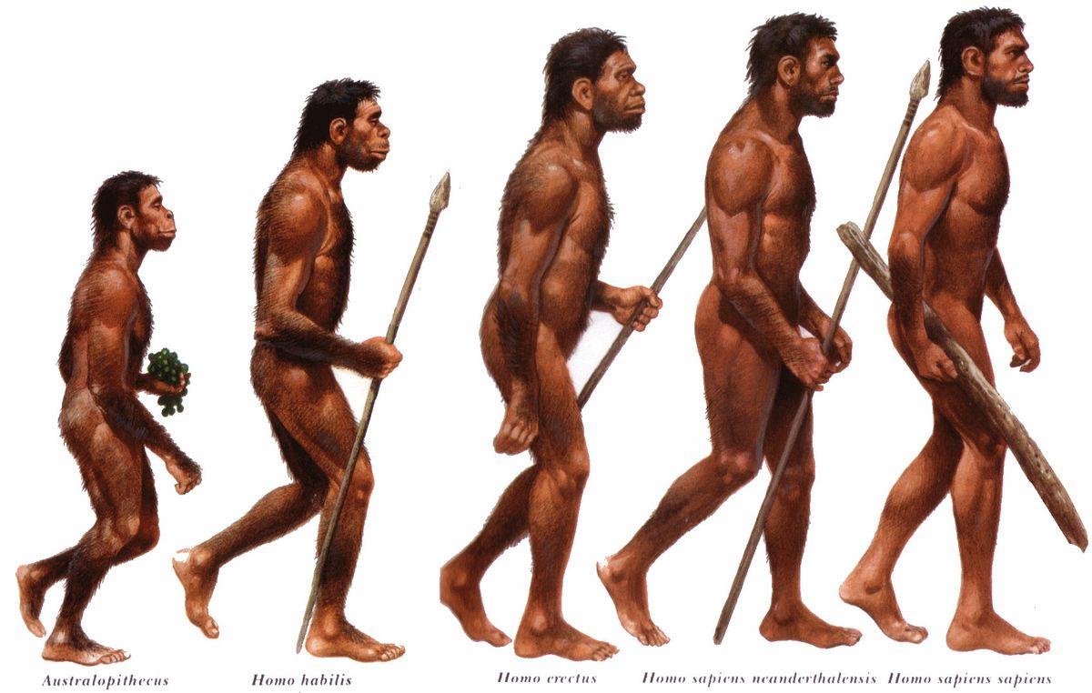 Noile descoperiri arheologice 'împing' originile Homo sapiens cu 350.000 în urmă